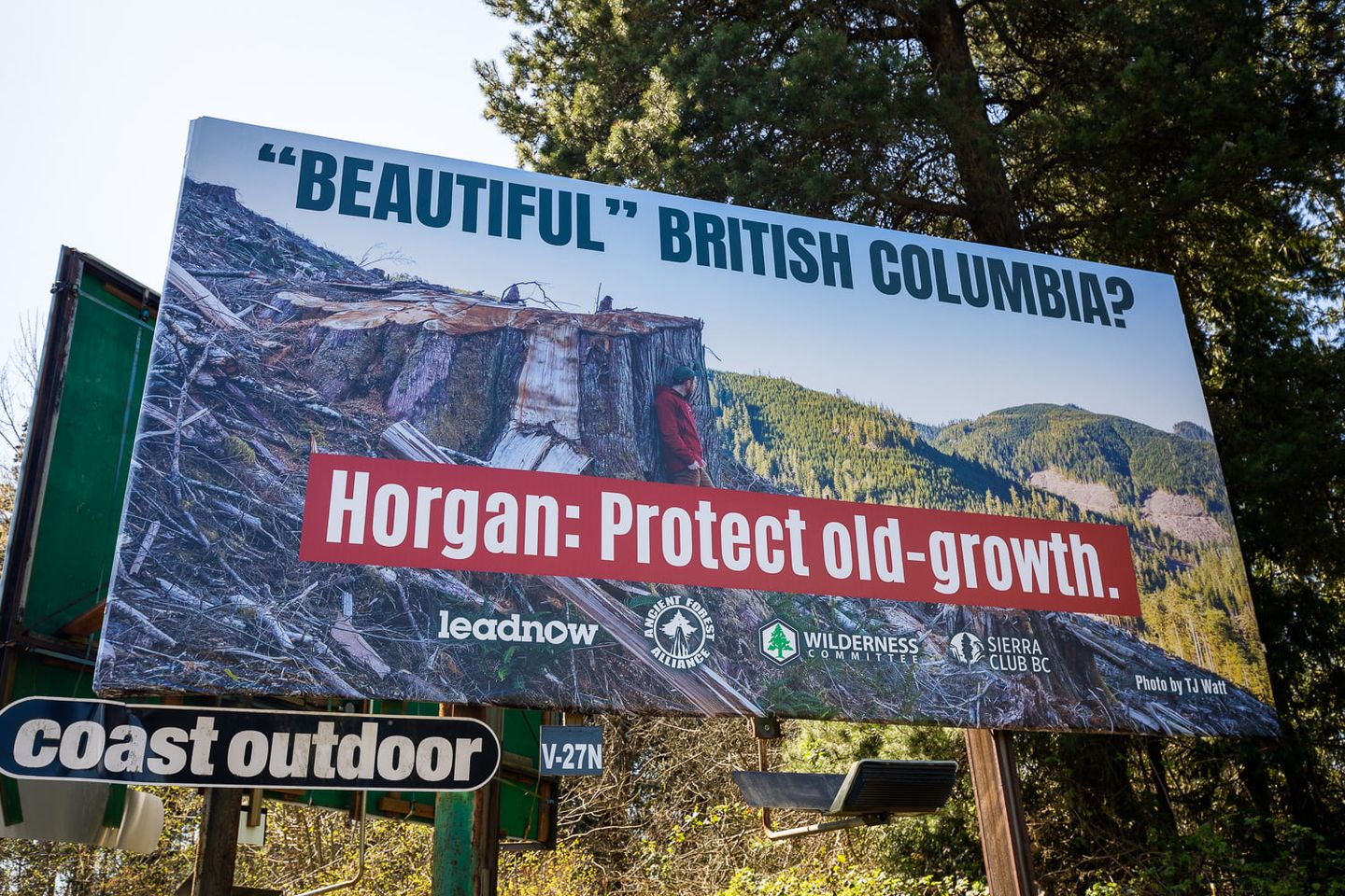 An image of the old growth billboard.